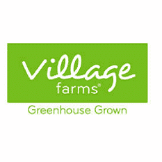 Weed Stocks Canada - Village Farms