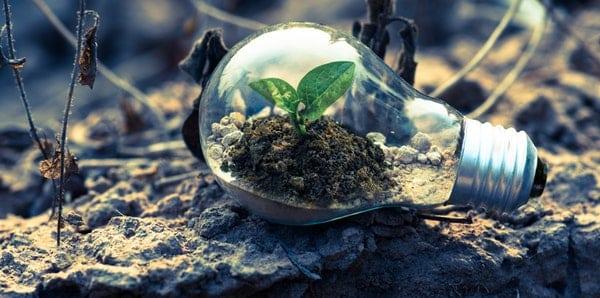 Pinnacle Renewables (PL.TO)